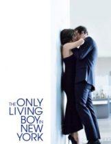 The Only Living Boy in New York (2017) ถ้าเหงาแล้วเรารักกันได้ไหม