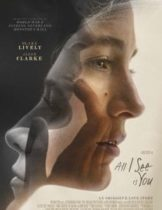 All i see is you (2016) รัก ลวง ตา
