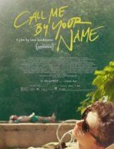 Call Me by Your Name (2017) คอลมีบายยัวร์เนม (Soundtrack ซับไทย)