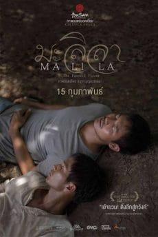 Malila The Farewell Flower (2017) มะลิลา