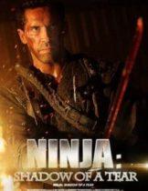 Ninja 2 Shadow of A Tear (2013) นินจานักฆ่าพยายาม 2