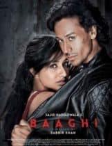 Baaghi (2016) ยอดคนสุดกระห่ำ (ซับไทย)