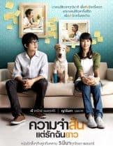 Best in Time (2009) ความจำสั้น แต่รักฉันยาว