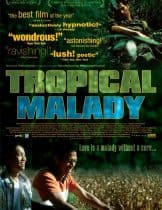 Tropical Malady (2004) สัตว์ประหลาด