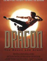 Dragon The Bruce Lee Story (1993) เรื่องราวชีวิตจริงของ บรู๊ซ ลี