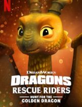 Dragons-Rescue-Riders-Hunt-for-the-Golden-Dragon-244x342