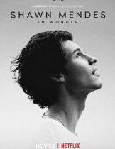 Shawn Mendes: In Wonder (2020) ชอว์น เมนเดส ช่วงเวลามหัศจรรย์