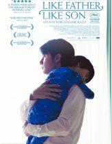 Like Father, Like Son (2013) พ่อจ๋า รักผมได้ไหม