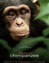 Chimpanzee (2012) ชิมแปนซี ผจญภัยในป่ากว้าง