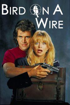 Bird on a Wire (1990) ดับอำมหิต