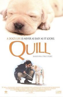 Quill The Life of a Guide Dog