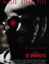 12 Monkeys (1995) มฤตยู 12 วานรล้างโลก